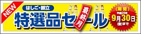 【9月】セール最終月!期間限定はしご・脚立 特選品セール!!