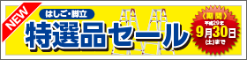 【8月】期間限定!はしご・脚立 特選品セール!!