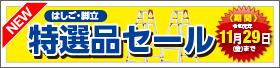 【10月】期間限定!はしご・脚立 特選品セール!!
