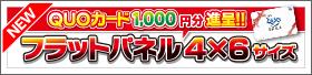 【11月】フラットパネルシリーズ4×6サイズ「QUOカードキャンペーン」!!